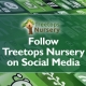 Follow Treetops Nursery on social media
