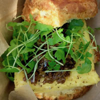 A sandwich with microgreens as a garnish