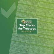 Top Marks for Treetops Nursery, Willesden