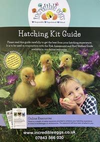 Duckling hatching guidelines