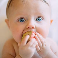 Babies often chew toys when they're teething